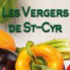 primeurs, fruits et légumes saint cyr